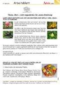 Obst - nicht wegzudenken für unsere Ernährung