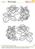 Malvorlage bunte Rosen