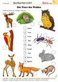Die Tiere des Waldes