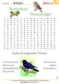 Worträtsel Wiesenvögel