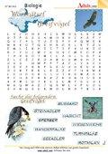 Worträtsel Raubvögel