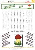 Worträtsel Pilze