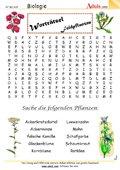 Worträtsel Feldpflanzen