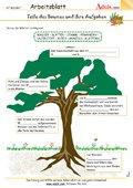 Teile eines Baumes