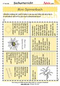 Mini-Spinnenbuch