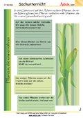 Pflanzen, die uns ernähren