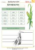 Getreidesorten