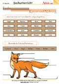 Fuchs - Körper und Nahrung