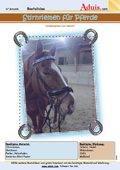 Stirnband für Pferde