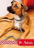 Hundehalsband und -leine aus Paracord