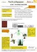 Le bois - Une énergie renouvellable