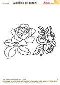 Modèle de dessin - Roses multiples