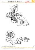 Modèle de dessin - Fantasia