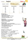 Basic info pronouns - Only for pros