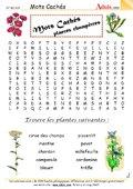 Mots Cachés : Les plantes champêtres
