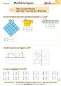 Test de compétences : Surfaces/fractions/symétrie