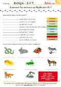 Comment se déplacent les animaux ?