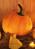 Halloween - Citrouille déco