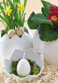 Vases avec bandes de plâtre