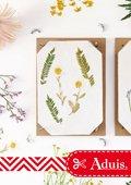 Instructie: Bloemen persen / met de bloemenpers