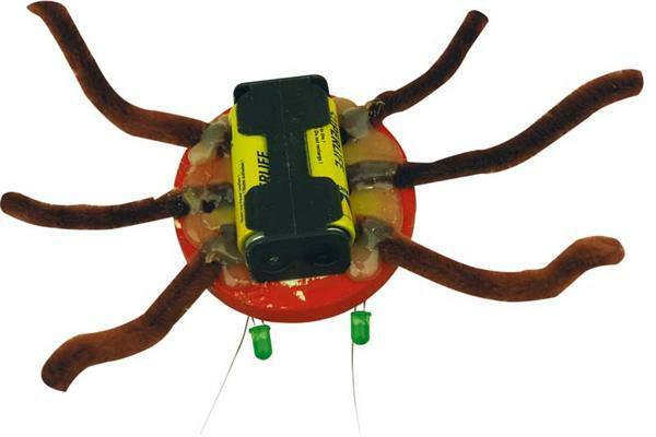 Luminarx l'araignée - Herbie la coccinelle