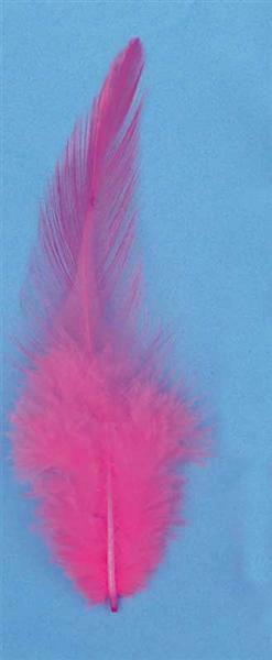 Decoratieve veren - 15 st., zuurstokroze
