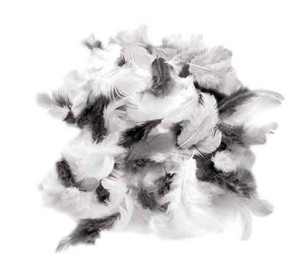 Mélange plumes déco - 10 g, blanc-noir-gris