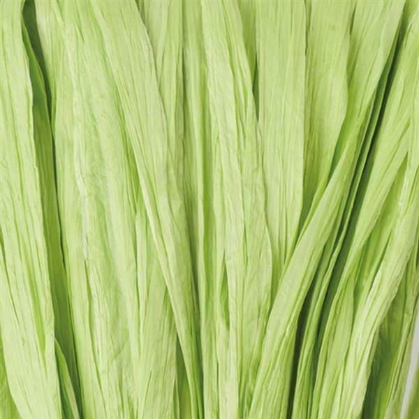 Bast matt - 10 g, lindgrün