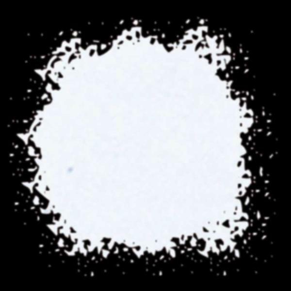 Gekleurd glazuurpoeder - 10 ml, wit