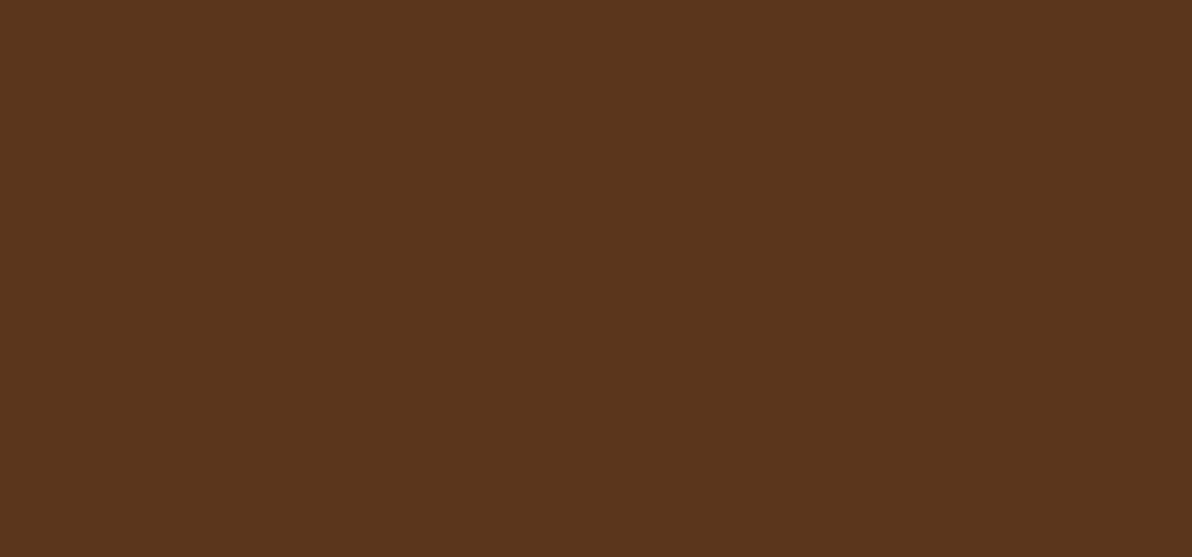 Aduis Acryliic acrylverf - 500 ml, bruin