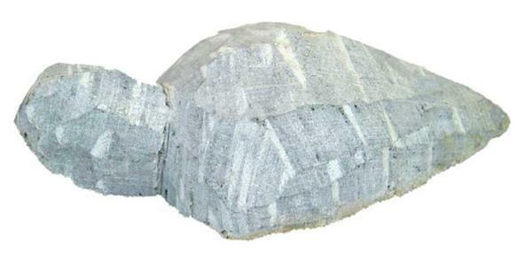 Speckstein Rohling, Schildkröte