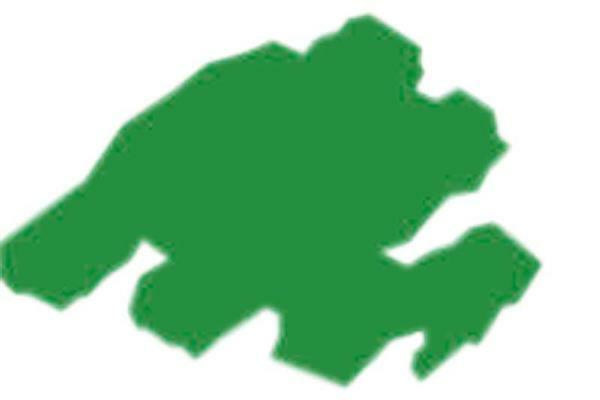 Stoffmalstift Texi Mäx - 2 - 4 mm, grün