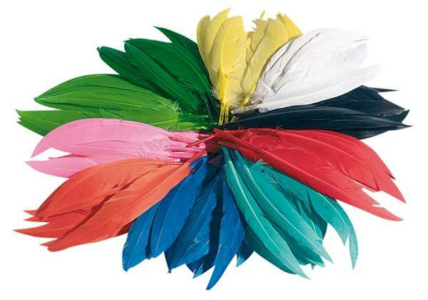 Plumes d'Indiens - 100 g, multicolore
