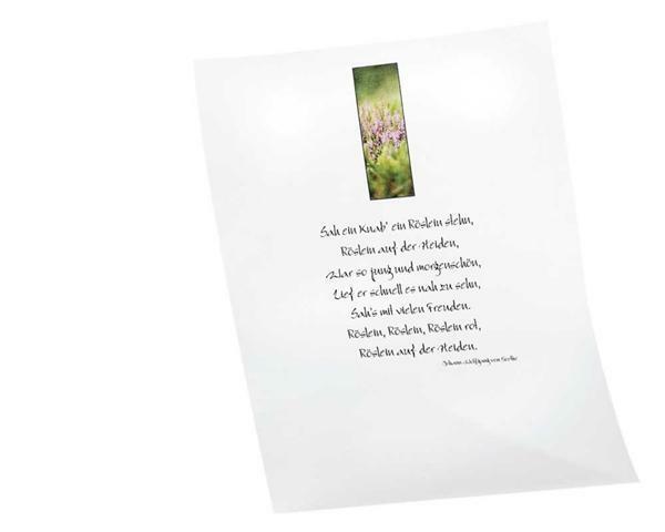 Transparentpapier - A4, 10 Blatt, bunt