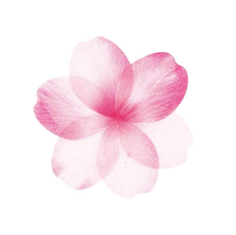 Washi Sticker - Blüten rosé