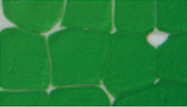 Mozaïekcolour - 30 ml, donkergroen
