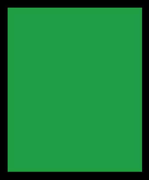 Pâte à modeler - 350 g, vert
