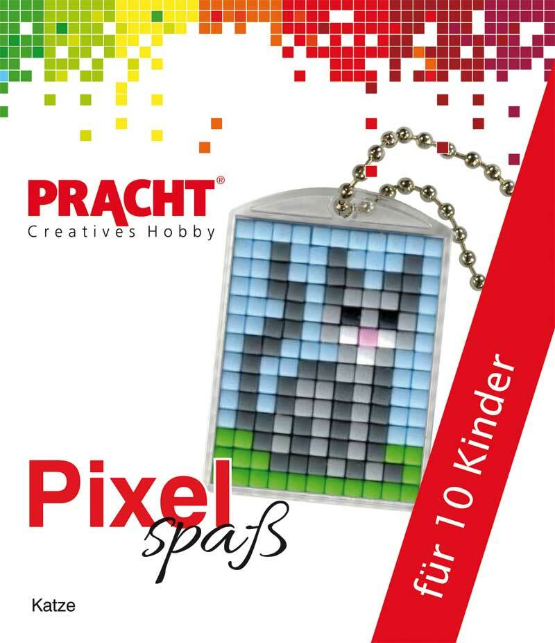 Pixelset voor 10 kinderen - kat