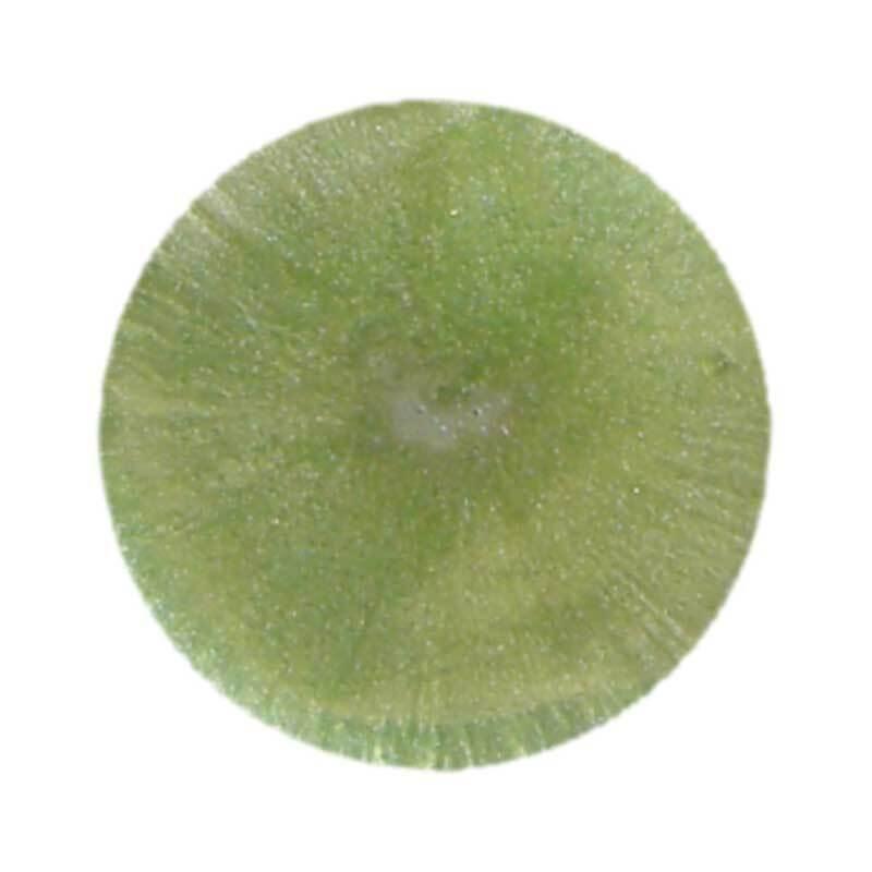 Colorant métallisé pour résine - 8 ml, vert scarab