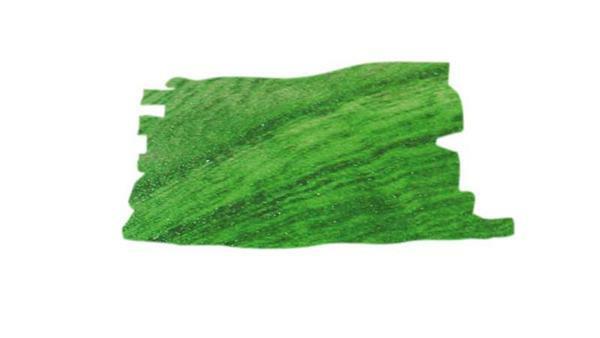 Holzlasur 50 ml, hellgrün