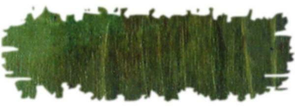 In water oplosbare houtbeits - 20 g, groen