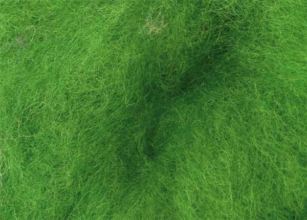 Märchenwolle - 100 g, grün
