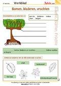 Planten en bomen