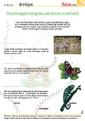 Overlevingsstrategieë van dieren in het wild