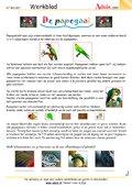 De papegaai