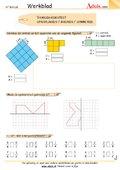 Vaardighedentest / oppervlakken / breuken / symmet