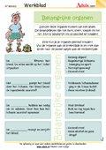 Belangrijke organen