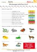 Wie bewegen sich Tiere fort?